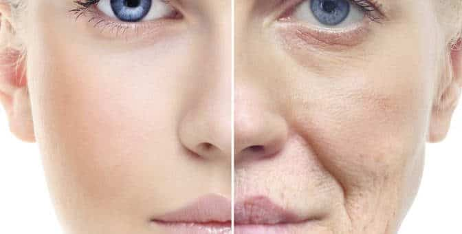 Prévenir la vieillesse cutanée